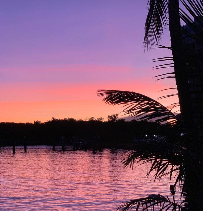 c'est la vie precious life force hurricane dorian purple sky